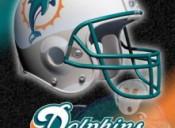 La Storia dei Dolphins
